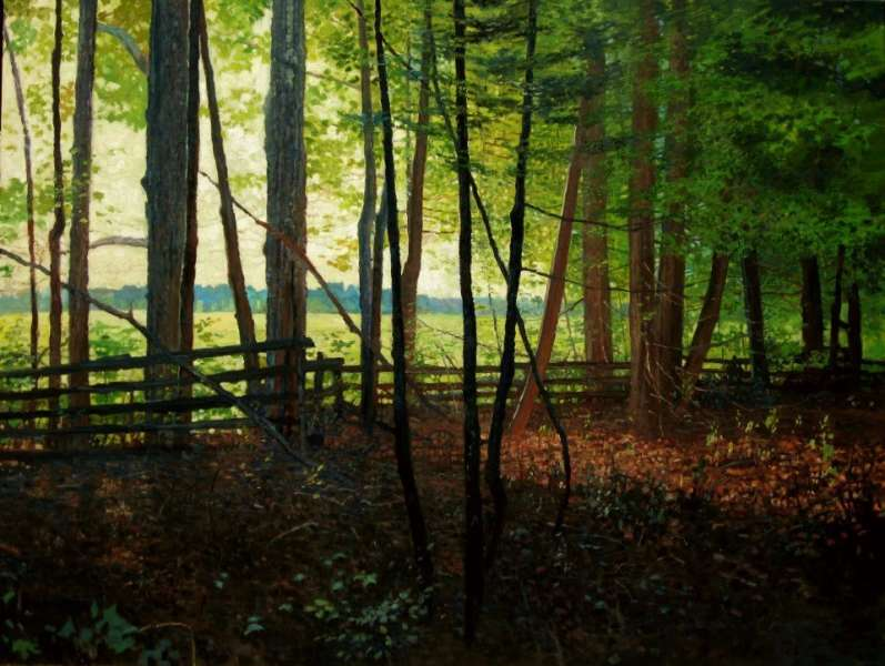 Chris Morton, Inside the Fenceline, Oil on Canvas